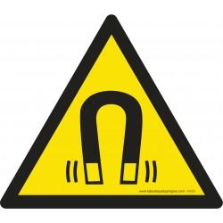 Pictogramme Danger champ magnétique W006