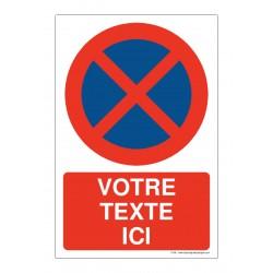 P058 - Arrêt et stationnement interdit + Texte