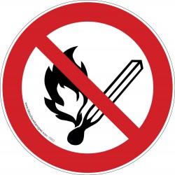 Pictogramme Flammes interdites P003